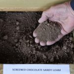 Screened Chocolate Sandy Loam